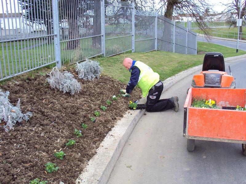 Grounds Maintenace
