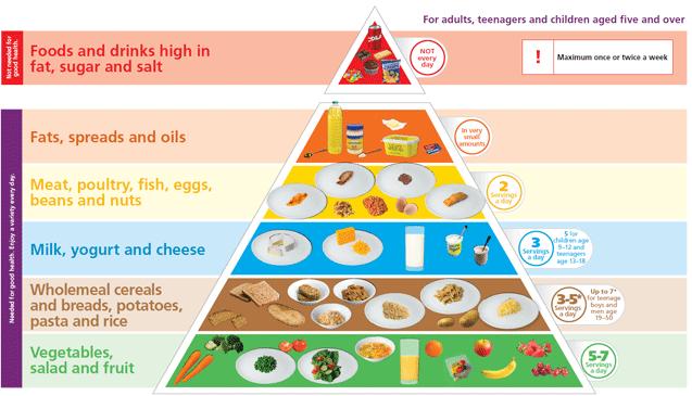 hfme food pyramid